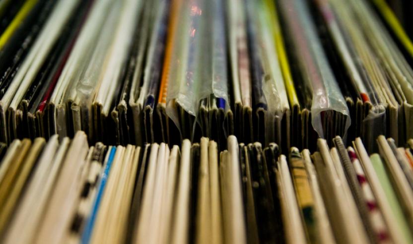 Vinyl oder Vinyls?