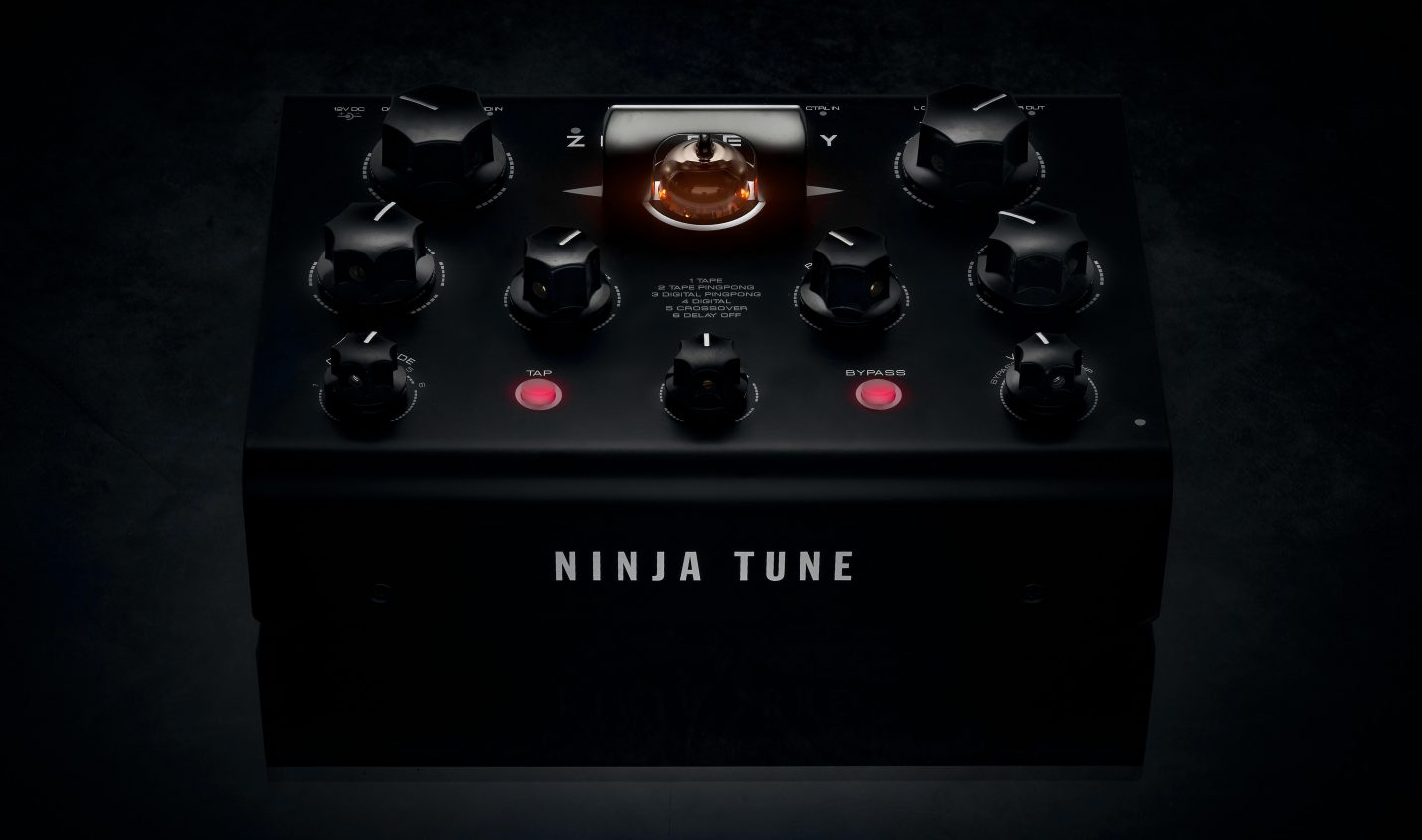 Neu: Ninja Tune + Erica Synths = Dub Delay