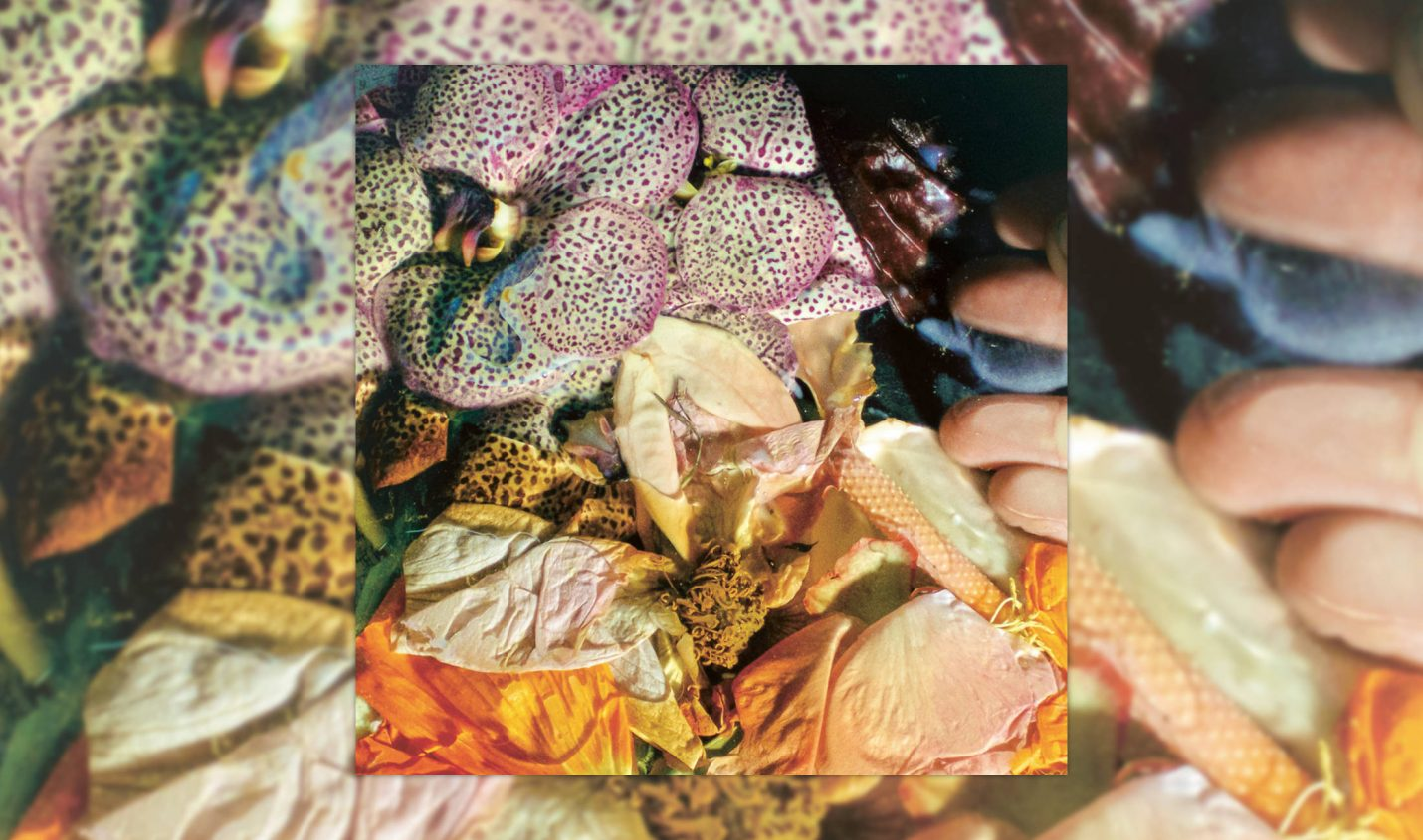 Review: Soela – Genuine Silk [Dial]