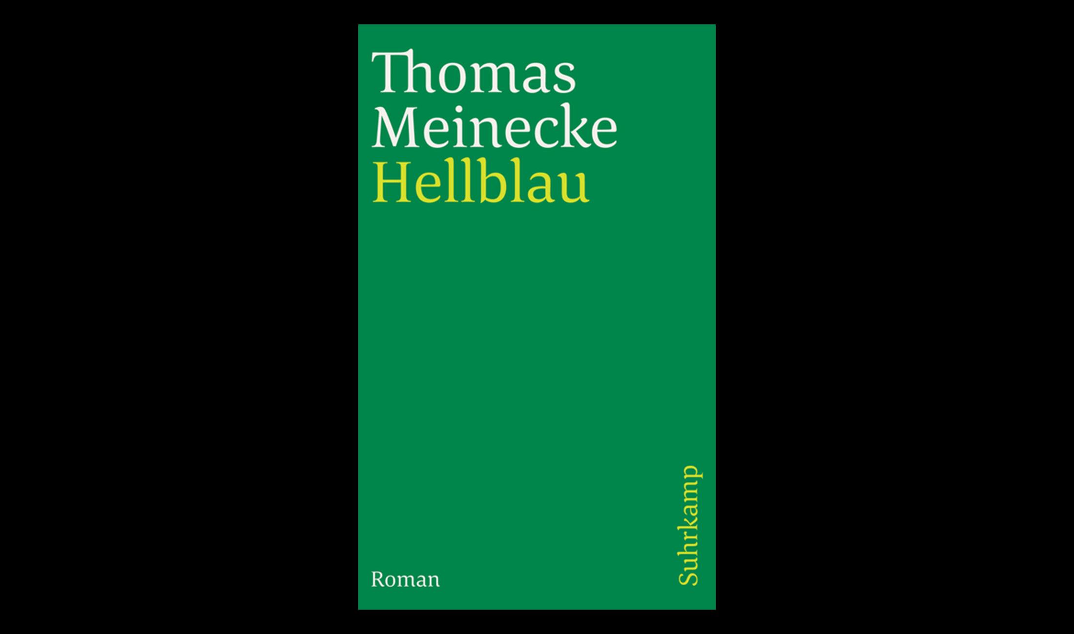 Techno Roman: Hellblau (2001) von Thomas Meinecke.