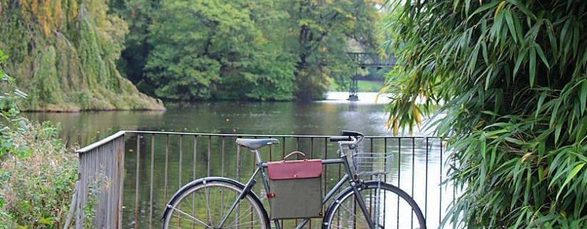 Bicycle Record Bag