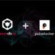 Pioneer kooperiert mit Pulselocker